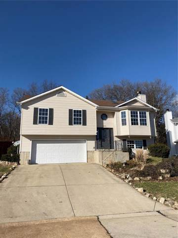 4269 NW Point, House Springs, MO 63051 (#19086479) :: Clarity Street Realty