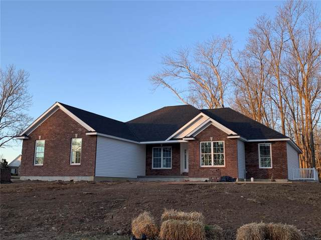 1173 Springbrook Park Drive, Farmington, MO 63640 (#19090461) :: Sue Martin Team