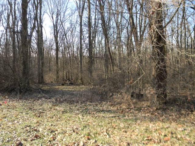 0 Lot 50, Deer Trail, Labadie, MO 63055 (#20003646) :: Clarity Street Realty