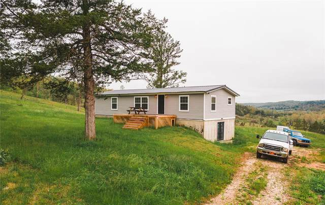 17566 Highway 49, Black, MO 63625 (#20005031) :: Parson Realty Group