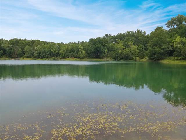 0 120+/- Ac Vandiver (Parcel D) Street, Mexico, MO 65265 (#20005038) :: Clarity Street Realty