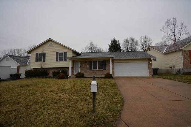 708 Cougar Creek Trail, Saint Peters, MO 63376 (#20007279) :: Clarity Street Realty