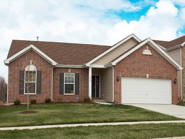 111 Hidden Bluffs Drive, Lake St Louis, MO 63367 (#20008423) :: Sue Martin Team
