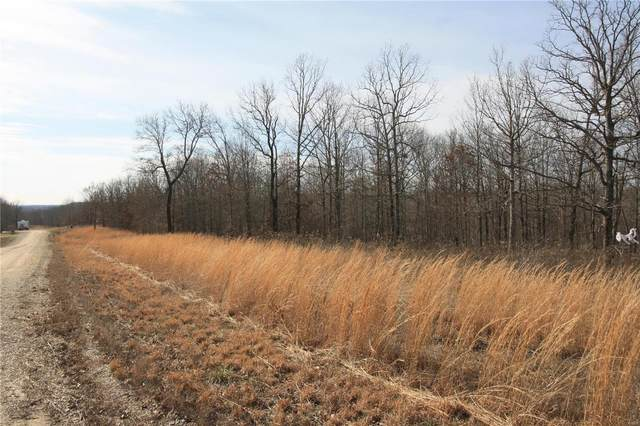 0 Lot 25 Holiday Hills Dev, Wappapello, MO 63966 (#20008461) :: Matt Smith Real Estate Group