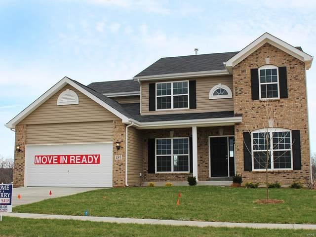 805 Hazy Hills Drive, Lake St Louis, MO 63367 (#20008554) :: Sue Martin Team