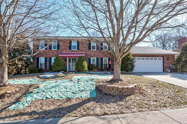 1038 Shadow Ridge Crossing, O'Fallon, IL 62269 (#20010231) :: Kelly Hager Group   TdD Premier Real Estate