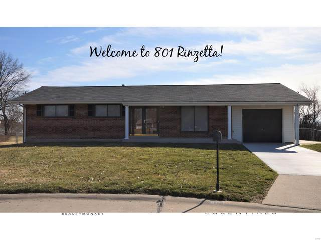 801 Rinzetta Drive, St Louis, MO 63129 (#20013780) :: St. Louis Finest Homes Realty Group