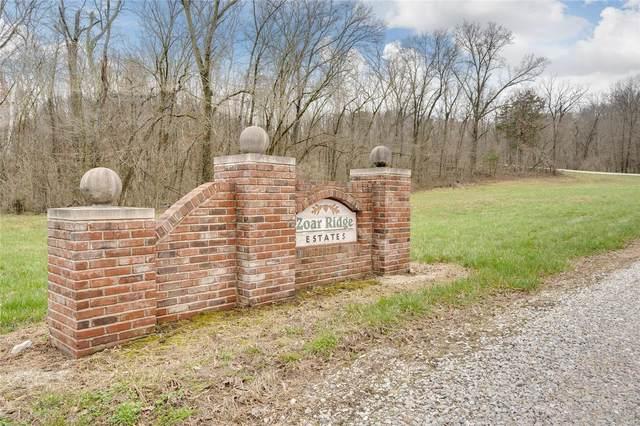 204 Jabin Farm (Lot 9) Court, Wright City, MO 63390 (#20016747) :: Parson Realty Group