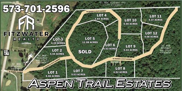 1 Aspen Trail Drive, Potosi, MO 63664 (#20019426) :: The Becky O'Neill Power Home Selling Team