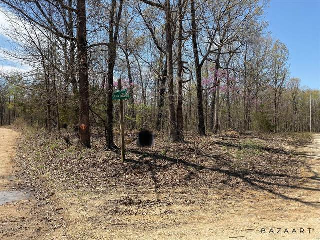 0 Squaw Creek Rd, Potosi, MO 63640 (#20024541) :: Parson Realty Group