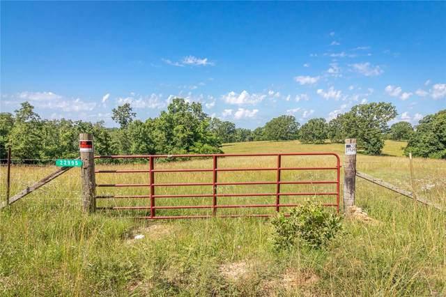22995 Red Oak Rd, Waynesville, MO 65583 (#20040886) :: Realty Executives, Fort Leonard Wood LLC
