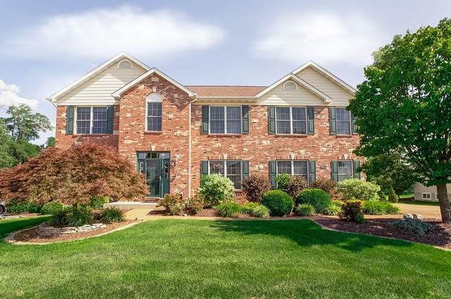 1158 Stonewolf Trail, Fairview Heights, IL 62208 (#20041967) :: Parson Realty Group