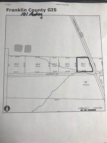 101 Audrey Lane, Union, MO 63084 (#20043306) :: PalmerHouse Properties LLC