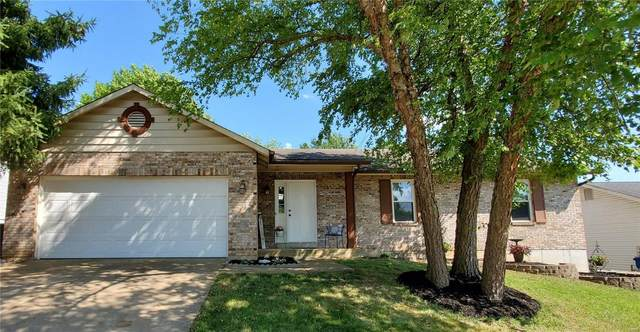 1105 Holly Springs Trail, Saint Peters, MO 63376 (#20044550) :: RE/MAX Vision