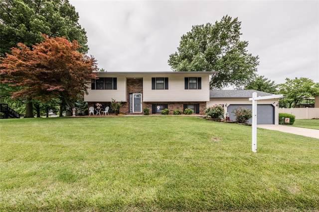907 Long Branch Road, Troy, IL 62294 (#20045270) :: Hartmann Realtors Inc.