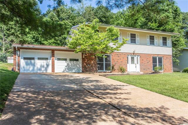 6825 Birdie Lane, St Louis, MO 63129 (#20045341) :: RE/MAX Professional Realty