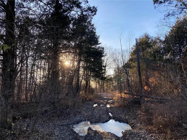 7 Sherwood Meadows Circle, Marthasville, MO 63357 (#20050256) :: Hartmann Realtors Inc.