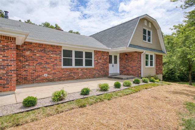 11 Silver Birch, Wentzville, MO 63385 (#20052882) :: The Becky O'Neill Power Home Selling Team