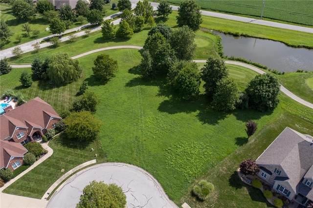 502 Niblick, Caseyville, IL 62232 (#20054341) :: Century 21 Advantage