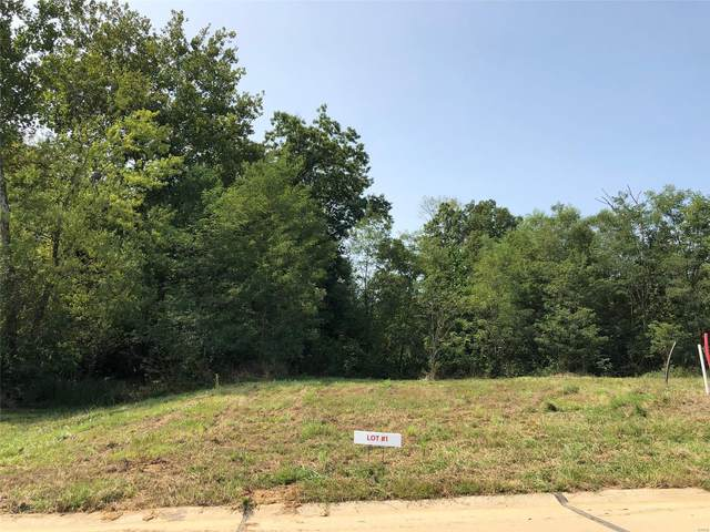 101 Wildflower (Lot #1) Lane, Troy, MO 63379 (#20055344) :: Parson Realty Group