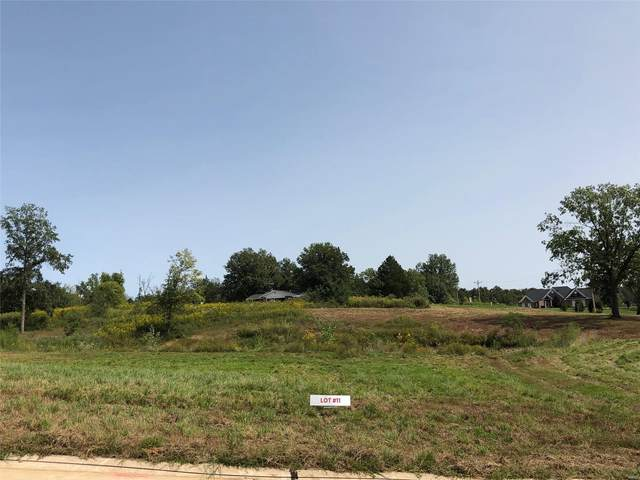 108 Wildflower (Lot #11) Lane, Troy, MO 63379 (#20055720) :: Century 21 Advantage