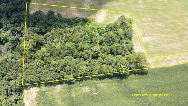 0 Carnation Road, PINCKNEYVILLE, IL 62274 (#20057843) :: Parson Realty Group