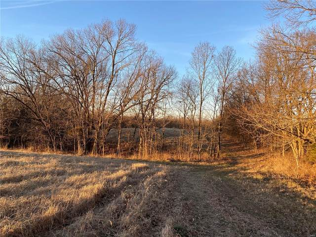 0 Timber Ridge Drive (55) Drive, Marthasville, MO 63357 (#20065228) :: Kelly Hager Group | TdD Premier Real Estate