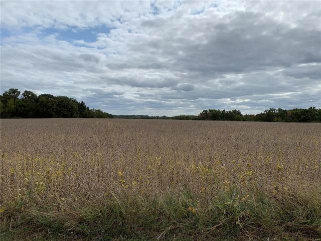 0 9.31 Acres Sycamore Lane, Winfield, MO 63389 (#20069095) :: Clarity Street Realty