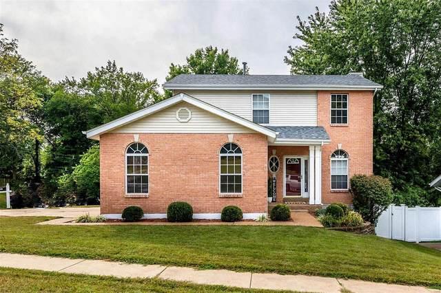 301 Carlson Avenue, Maryland Heights, MO 63043 (#20069729) :: RE/MAX Vision