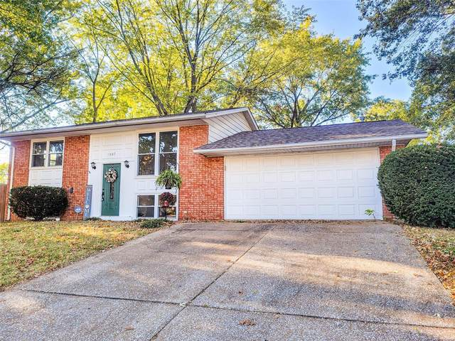 1307 Potomac, Belleville, IL 62221 (#20069850) :: Clarity Street Realty