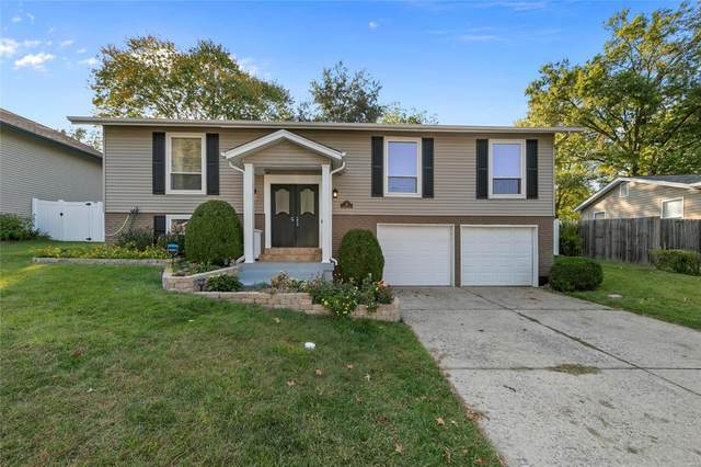 36 Christine Drive, Saint Peters, MO 63376 (#20072369) :: Clarity Street Realty