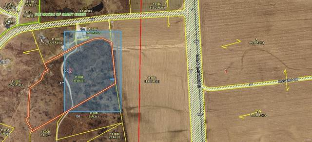 120 Hunters Hollow Lane, Foley, MO 63347 (#20079717) :: Krista Hartmann Home Team