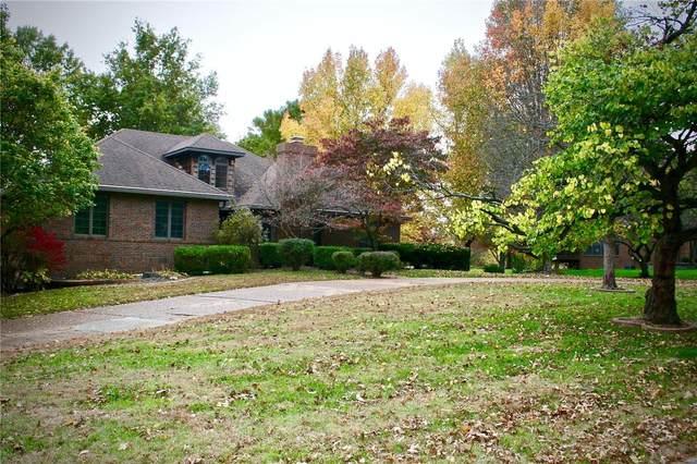 8 Sandpiper Drive, Shiloh, IL 62221 (#20081707) :: Century 21 Advantage