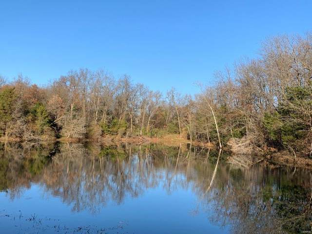 0 Hwy Aa, 85 +/- Acres, Warrenton, MO 63383 (#20082268) :: Parson Realty Group