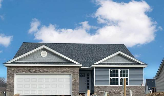 234 Wingate Drive, Shiloh, IL 62221 (#20088718) :: Fusion Realty, LLC