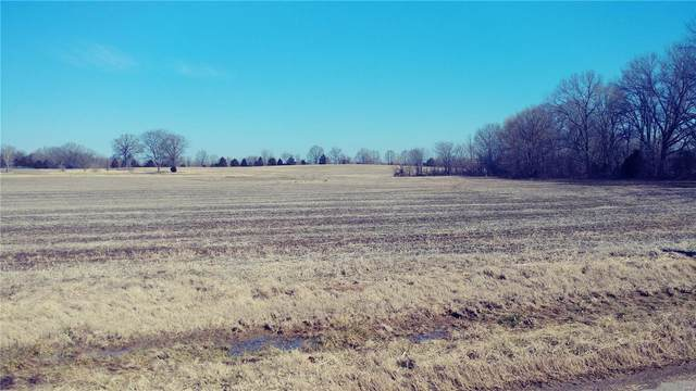 0 Highway M, Bloomfield, MO 63825 (#21006987) :: Clarity Street Realty