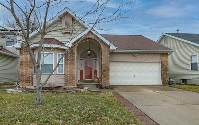 2826 Brookmeadow Drive, Belleville, IL 62221 (#21011822) :: Matt Smith Real Estate Group
