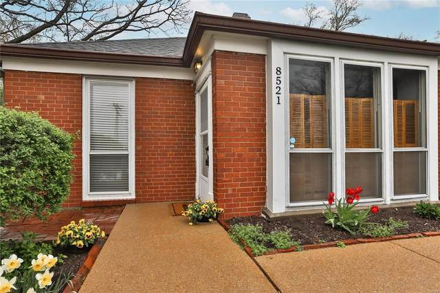 8521 Gannon Avenue, St Louis, MO 63132 (#21011878) :: Terry Gannon | Re/Max Results