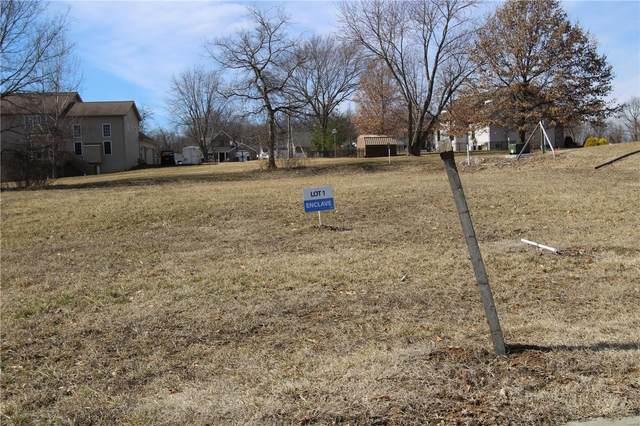 101 Enclave Terrace Court, Weldon Spring, MO 63304 (#21012222) :: PalmerHouse Properties LLC