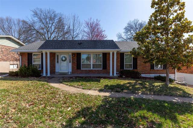 4702 Mehl Avenue, St Louis, MO 63129 (#21017640) :: RE/MAX Vision