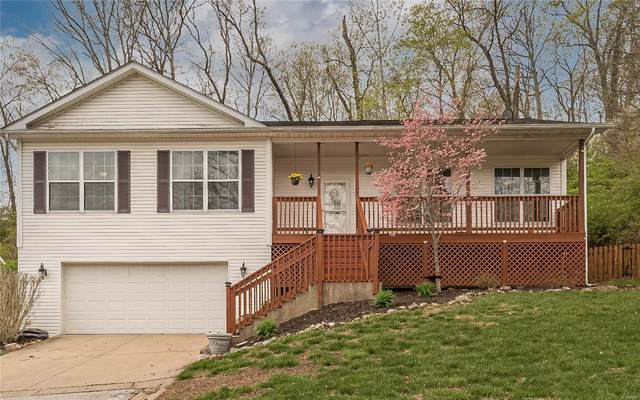 4101 Erin Meadow, House Springs, MO 63051 (#21022820) :: Parson Realty Group