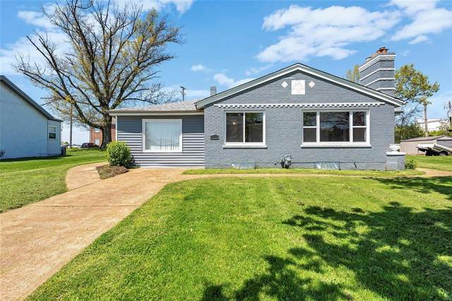 4159 Crescent Drive, St Louis, MO 63129 (#21025946) :: RE/MAX Vision