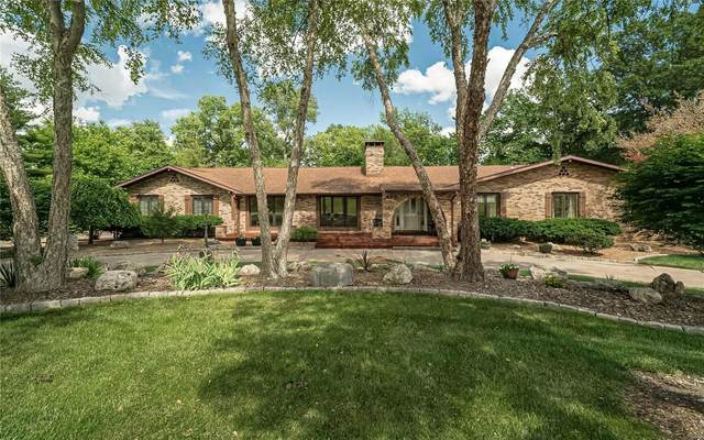 442 Cheshire Farm Court, Town and Country, MO 63141 (#21035462) :: Peter Lu Team
