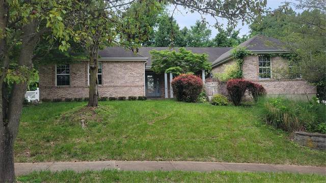 16426 Prestwick Place Drive, Wildwood, MO 63011 (#21037582) :: Parson Realty Group