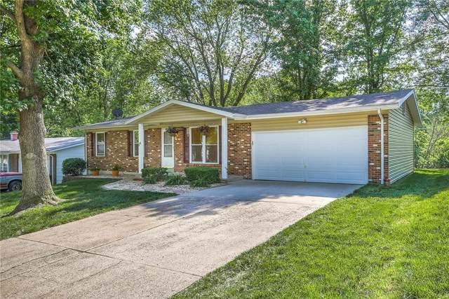 28 South Boxwood Lane, O'Fallon, MO 63366 (#21038909) :: The Becky O'Neill Power Home Selling Team