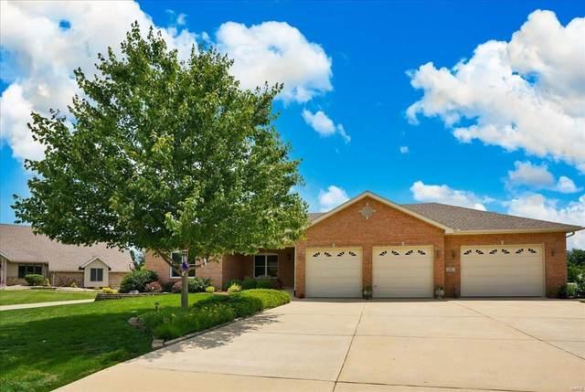 221 Sundew Drive, Belleville, IL 62221 (#21039008) :: Parson Realty Group