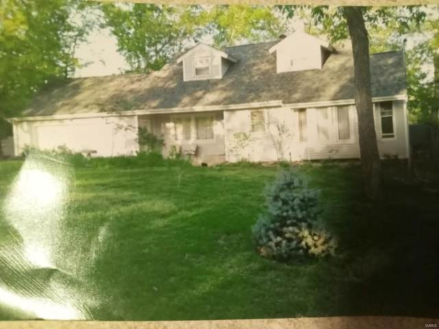 163 S Kings, Marthasville, MO 63357 (#21043777) :: Reconnect Real Estate