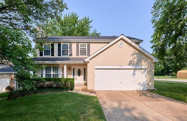 256 Westridge Parc Lane, Ellisville, MO 63021 (#21051528) :: PalmerHouse Properties LLC