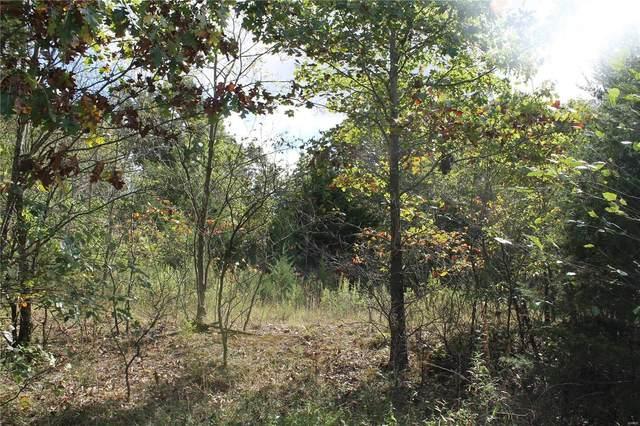 1616 Sandpiper, Saint Clair, MO 63077 (#21052022) :: Realty Executives, Fort Leonard Wood LLC