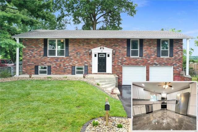 10 Bellevue Drive, Collinsville, IL 62234 (#21053214) :: St. Louis Finest Homes Realty Group